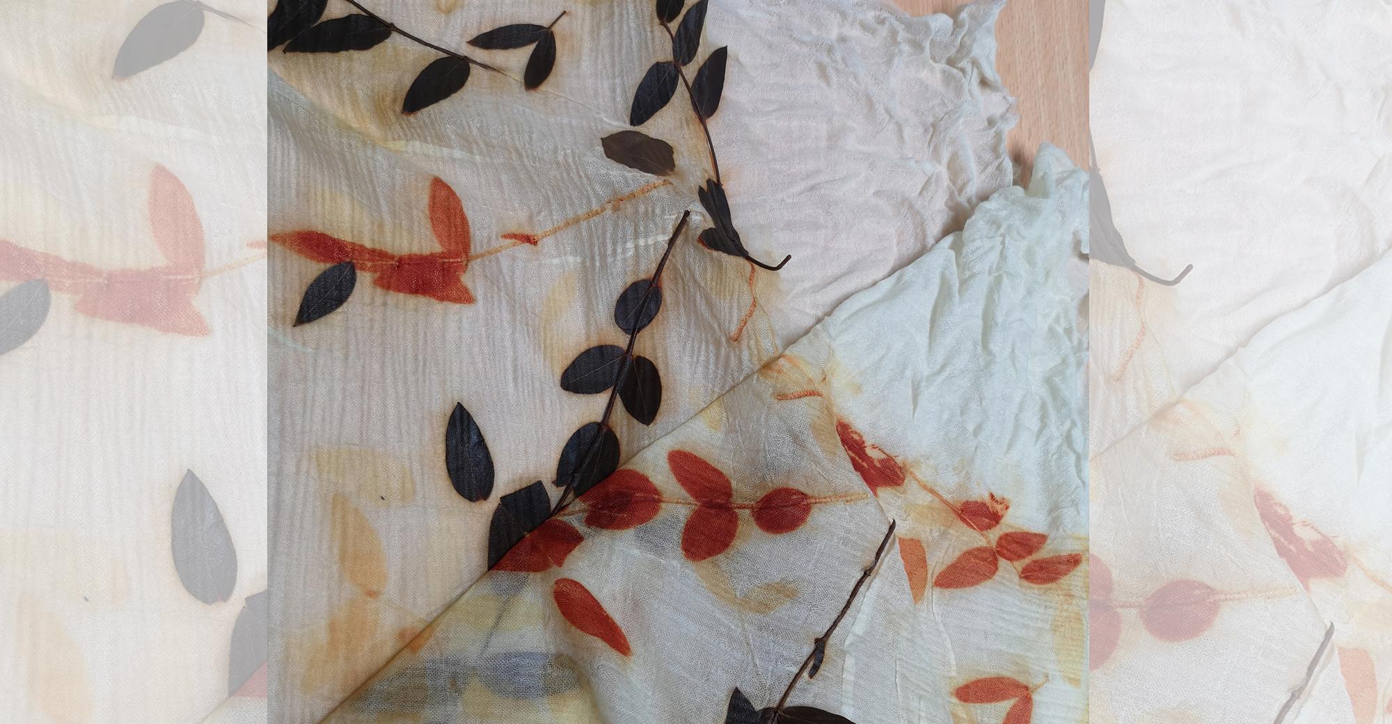 Abbildung getrocknete Pflanzen auf einem Tuch
